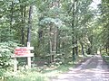Rezerwat przyrody Krzemianka - panoramio.jpg