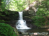 A falls that drops from a ledge and then cascades on layered rocks below. The sunlit leaves on the surrounding trees are green.