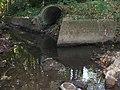 Riedgraben Einmündung in Seebach.jpg