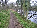 River Ayr Way - geograph.org.uk - 347454.jpg