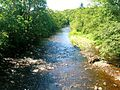 River Ayr at Haugholm.JPG