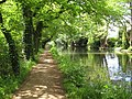 River Wey Navigation near Byfleet - geograph.org.uk - 815985.jpg