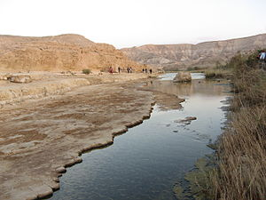 English: river in the negev desert, israel