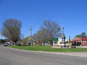 Bruthen, Victoria - Attractive road reserve between the Great Alpine Road and a service road