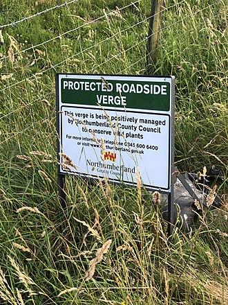 Road verge - Protection of roadside verge in Northumberland UK