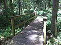 Robert Simpson Nature Trail 09.JPG