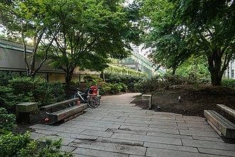 Robson Square - Garden pathway