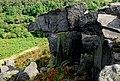 Rock outcrop on Gibbet Moor - geograph.org.uk - 554004.jpg
