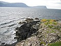 Rocks at Camus Ban on Neist Point - geograph.org.uk - 252046.jpg