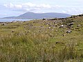 Rocky hillside on Clare Island - geograph.org.uk - 1394394.jpg