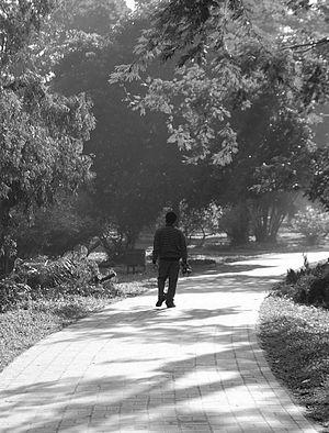 Ramna Park - Walkway through the park.