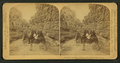 Room for one more, Williams Canyon, Colorado, U.S.A, from Robert N. Dennis collection of stereoscopic views 4.png