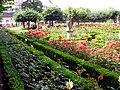 Rosengarten VI.jpg