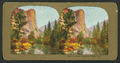 Royal Arches, Yosemite Valley, Cal, from Robert N. Dennis collection of stereoscopic views 2.png