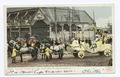 Royal Chariot with Rex, Mardi Gras Day, New Orleans, La (NYPL b12647398-68741).tiff