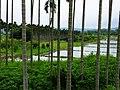 Ruanqiao Village 軟橋里 - panoramio.jpg