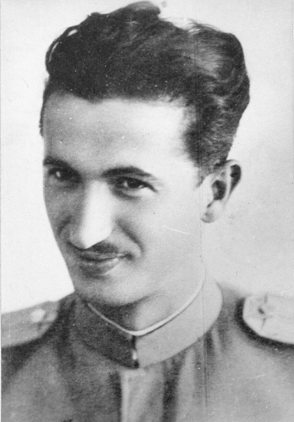 Rudi Čajavec