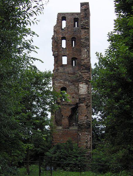 De toekomst van Nederlands oudste ruïne
