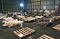 STS-107 debris in hangar.jpg