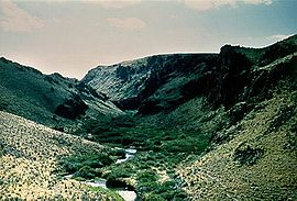 Salmon Falls Creek Canyon.jpg