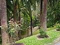 Santa Margherita Ligure-IMG 0085.JPG