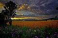 Scenic-country-farm - Virginia - ForestWander.jpg