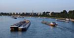 Schiffsstau auf dem Rhein bei Köln 2013-08-20-05.JPG