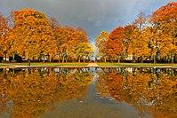 Schlossgarten-Rastatt.jpg