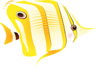 Sea fish.png