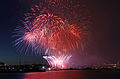Seattle FamilyFourth July4 Fireworks GasworksPark.jpg