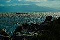 Serra do Mar.jpg