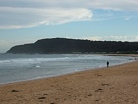 Shelly Beach 2010.JPG