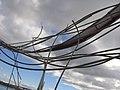Shoal Fly By 06.jpg