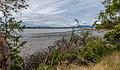 Sidney Spit Lagoon, Sidney Island, British Columbia, Canada 11.jpg