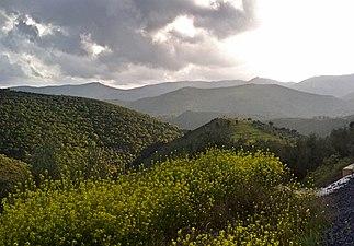 Sierra Madrona.jpg