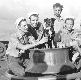 Sinbad (dog) - Sinbad and crewmates, 1943