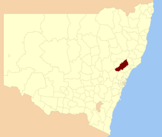 Singleton Council Local government area in New South Wales, Australia