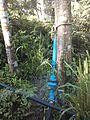 Sistema de riego con bomba de ariete, Pijijiapan, Chiapas 02.jpg