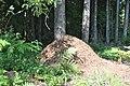Skudru pūznis, Vecumnieku pagasts, Vecumnieku novads, Latvia - panoramio (3).jpg