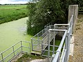 Sluice gate on Lake Wall Rhyne - geograph.org.uk - 1391465.jpg