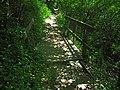 Small, Precarious Bridge - panoramio.jpg