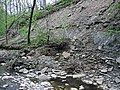 Small landslide (Roaring Run, Warren County, Ohio, USA) 4 (45507291911).jpg