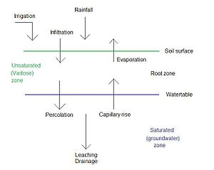 SaltMod - Water balance factors in the top soil