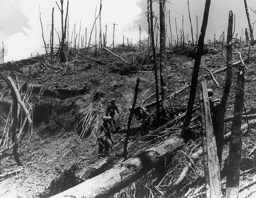Soldiers of the 101st Airborne Division inspect damage in the surrounding area of Dong Ap Bia during Operation Apache Snow, May 1969