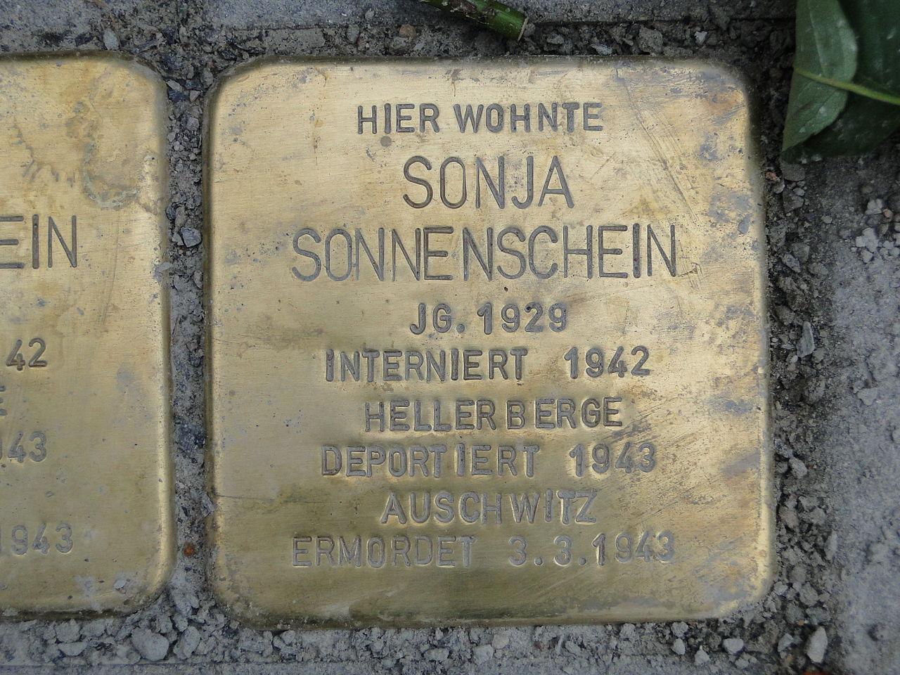 Sonja Sonnenschein Stolperstein Dresden.JPG
