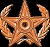 Special Bronze Barnstar.png