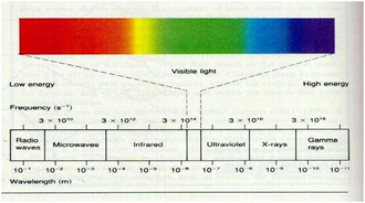 Night vision - Spectrum of light