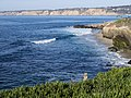 Squirrel watching over the coast in La Jolla (70350).jpg