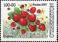 Stamps of Uzbekistan, 2007-21.jpg