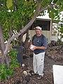 Starr-121219-1194-Cordia subcordata-habit with Kurt setting up fruit fly trap-Honokanaia-Kahoolawe (24571685313).jpg